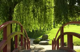 jardin feng shui un mobilier de jardin feng shui la vie d u0027aleisha rose en image