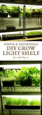grow lights for indoor herb garden smart diy för vertikal odling inomhus gardening pinterest