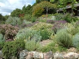 Backyard Slope Landscaping Ideas Garden Slope Solutions Fasci Garden
