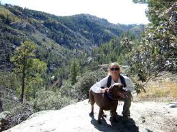 mt lemmon hiking trails map fishing hiking trekking reports stories pictures