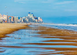 Maryland beaches images Best dog friendly beaches in maryland jpg
