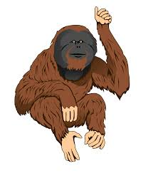 roll royce orangutan cartoon orangutan free download clip art free clip art on