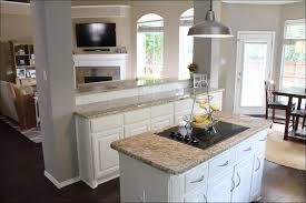 Best Kitchen Cabinet Hinges Kitchen Gray Cabinets Kitchen Cabinet Hinges Kitchen Cabinet