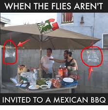 Bbq Meme - when the flies aren t invited to a mexican bbq meme on esmemes com