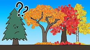 funny colors r ggplot boxplot fill color brewer spectrum stack overflow enter