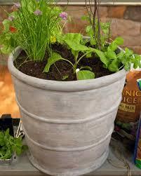 Vegetable Pot Garden by Planting Your Vegetable Garden U0026 Video Martha Stewart