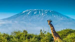 Montana What Is The Safest Way To Travel images Mt kilimanjaro climb marangu route africa travel with rei
