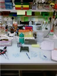 lab bench molecular biology real world exle of a molecular biology workbench visible items
