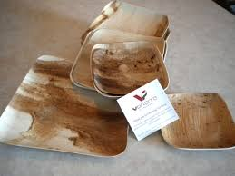 bamboo disposable plates best bamboo disposable plates best home decor ideas benefits