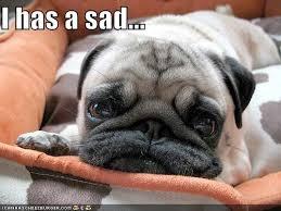 Sad Face Meme - nothing today sad face bryan joiner