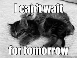 Snuggle Meme - snuggle kittens memes quickmeme