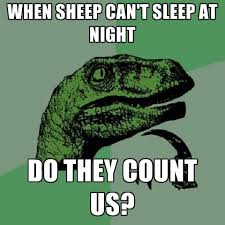 I Cant Sleep Meme - when sheep can t sleep at night do they count us create meme