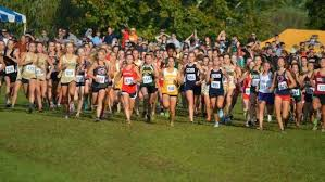 Barnes Dulaney Perkins Tennessee Girls Top 500 Xc Times Heading Into The Weekend