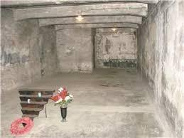 les chambres à gaz chambre à gaz photo de pologne auschwitz livres libres