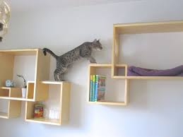 wall shelves design samples collection wall mounted cat shelves