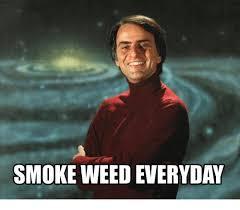 Smoke Weed Everyday Meme - smoke weed everyday meme on esmemes com