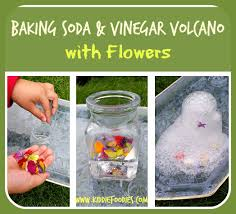 volcano flowers baking soda and vinegar volcano with flowers