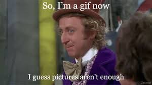 Willy Wonka And The Chocolate Factory Meme - willy wonka gif find share on giphy