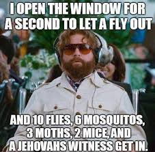 Fly Out Memes - i open the window to let a fly out flies mosquitos moths funny