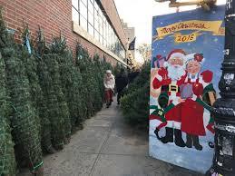 christmas trees at the essex street market santa visit saturday