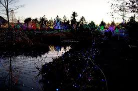 boothbay festival of lights how gardens aglow became maine s must see holiday attraction