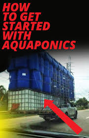 585 best aquaponics images on pinterest hydroponics fish