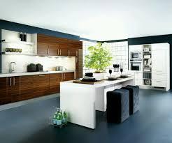 Kitchen  Simple L Shape Modern Kitchen Cabinets Cool Modern - Modern kitchen cabinet designs