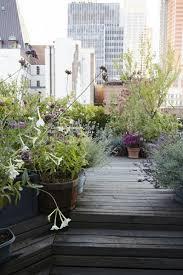 Modern House Roof Design by Garden Wooden Chairs Mini Hanging Plants Popular Garden Ideas