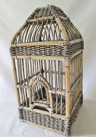 large bird cages foter