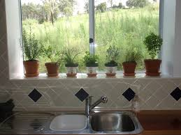 Kitchen Garden Window Ideas by Lowes Garden Windows Great Herbs Garden A Beautiful And Useful