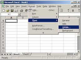 ms excel 2003 unhide a sheet