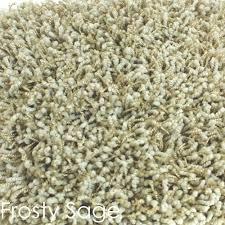 Shag Carpet Area Rugs Uptown Girl Area Rug Uptown Girl Carpet Shag Rug Shag Carpet