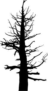 dead tree cartoon free download clip art on clipartbarn