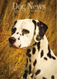 Dog News December 2 2011 by Dog News issuu