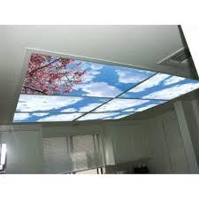 Fluorescent Light For Kitchen Jacaranda Tree Skypanels Replacement Fluorescent Light Diffuser