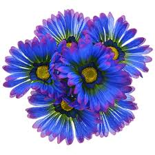 gerbera daisies bulk floral garden 6 stem purple gerbera bushes 14 in at