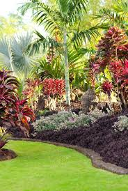 Small Tropical Garden Ideas 456 Best Tropical Landscaping Ideas Images On Pinterest Tropical
