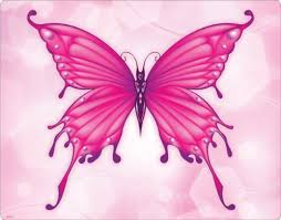 butterflies are so beautiful especially pink ones pink stuff
