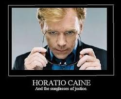 Horatio Caine Meme - 284 best anything csi images on pinterest david caruso miami and