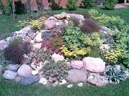 Colored Rocks For Garden Colored Rocks For Garden Snes Colored Garden Rocks Sdgtracker
