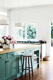 Teal Kitchen Cabinets 75 Best Removing The Kitchen Cabinet Doors Images On Pinterest