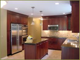Kitchen Cabinets Painting Kits Professional Kitchen Cabinet Painting Ellajanegoeppinger Com
