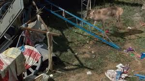 fake deer the walking dead u0027 season 7 episode 12 review u0027say yes u0027 to fake