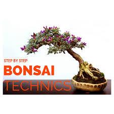 how to make bonsai tree at home in hindi by lyju kuruvilla in balcony gardening