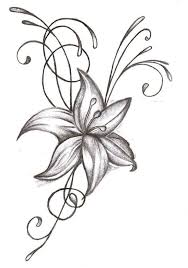 Simple Lotus Flower Drawing - 20 best what different type of drawing of flowers i like images on
