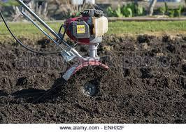 Vegetable Garden Preparation by Gardener Rotavating A Vegetable Garden Preparing The Soil For
