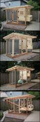 Backyard Chicken Coup by 107 Best Coop Building Plans Images On Pinterest Backyard