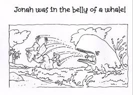 whale coloring page ngbasic com
