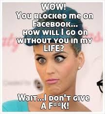 Blocked Meme - ideal block me on fb meme google search funny memes testing testing