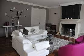 décoration canapé phénoménal salon canapé blanc decoration salon blanc et noir